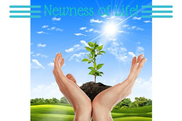 Newness-of-Life